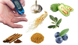 best herbs for diabetes